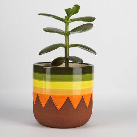 A photo of a hand made ceramic 70s design plant pot with a plant in